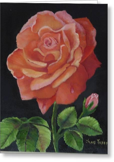 American Rose Greeting Card