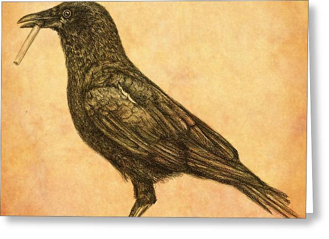 Greeting Card featuring the drawing American Smoking Crow by Penny Collins