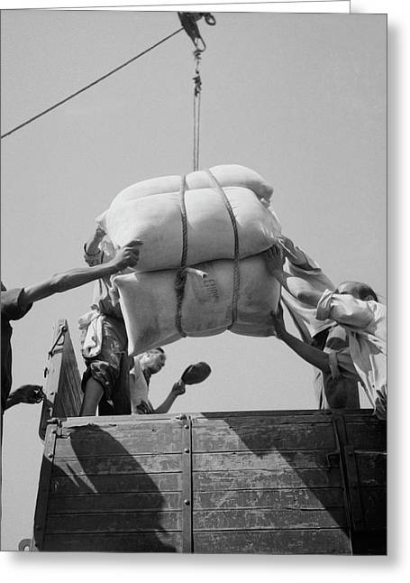 American White Flour Is Loaded Onto Greeting Card by Stocktrek Images
