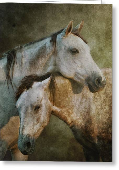 Amigos Greeting Card by Ron  McGinnis