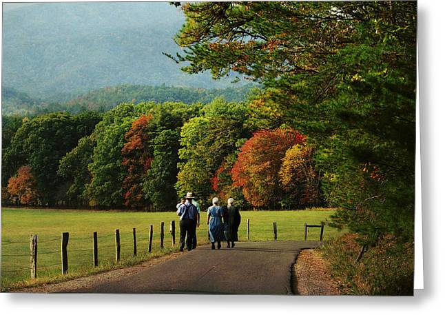 Amish Autumn Greeting Card by TnBackroadsPhotos