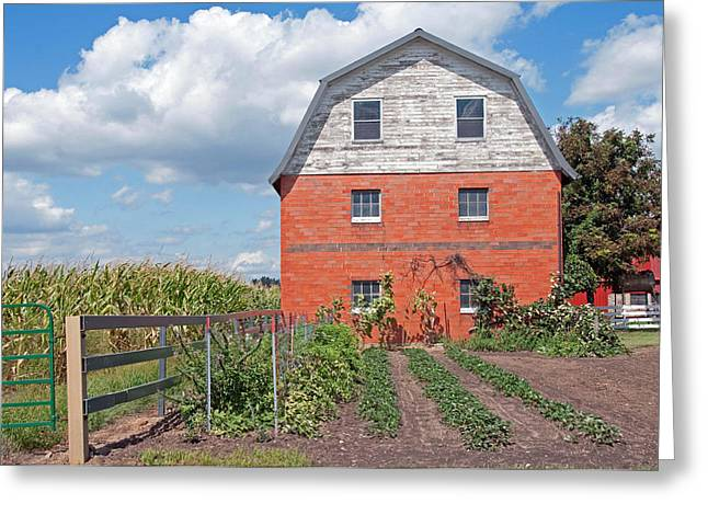 Amish Barn And Garden Greeting Card by David Arment