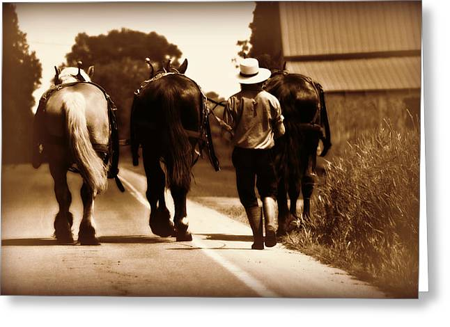 Amish Boy Farmer Greeting Card