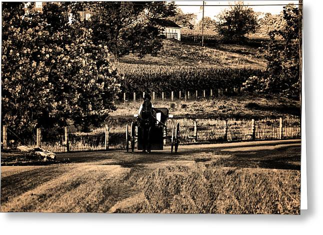 Amish Buggy On A Country Road Greeting Card by Bill Cannon