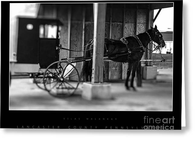 Amish Buggy Parking Greeting Card