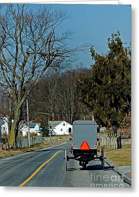 Amish Buggy Greeting Card by Skip Willits