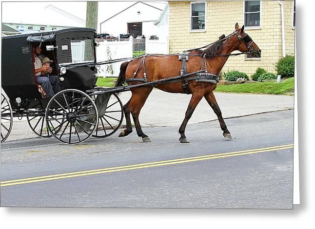 Amish Country Greeting Card by David Byron Keener