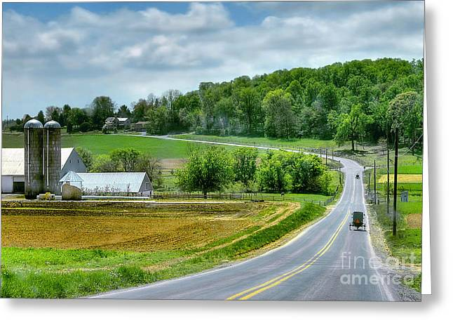Amish Countryside Greeting Card by Dyle   Warren