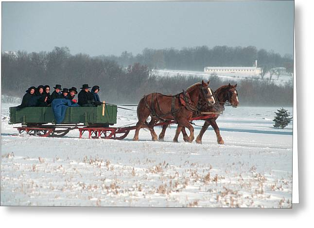 Amish Family Riding In Horse Drawn Greeting Card