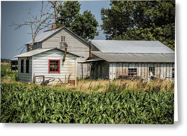 Amish Farm In Tennessee Greeting Card by Kathy Clark