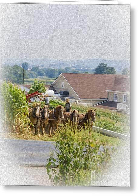 Amish Farmer And Son Greeting Card