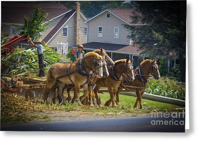 Amish Farmer And Son Working Greeting Card