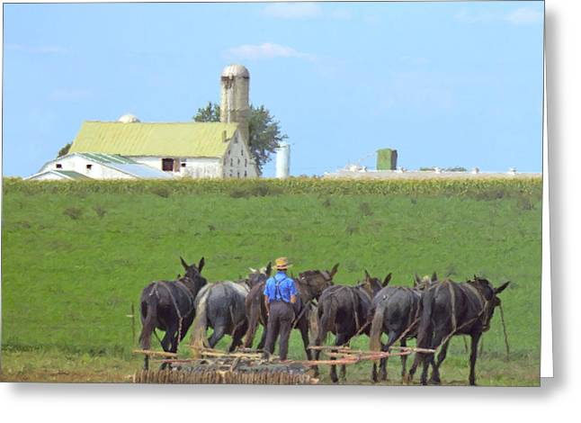 Amish Farmer Working The Land Greeting Card by Diane Diederich