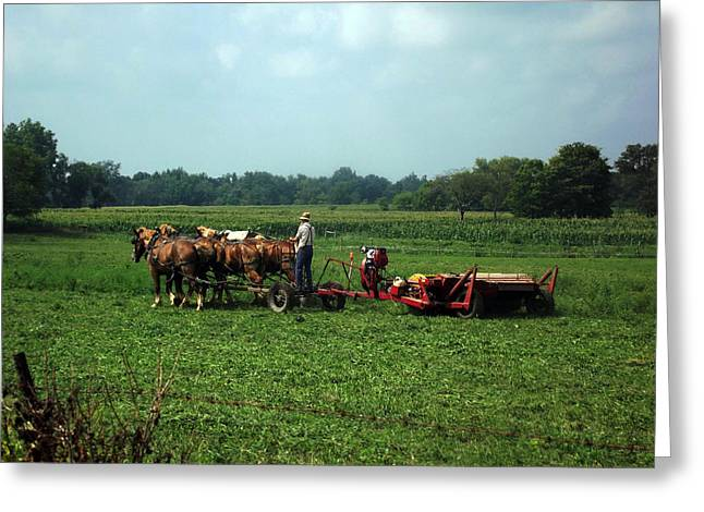 Amish Field Work Greeting Card
