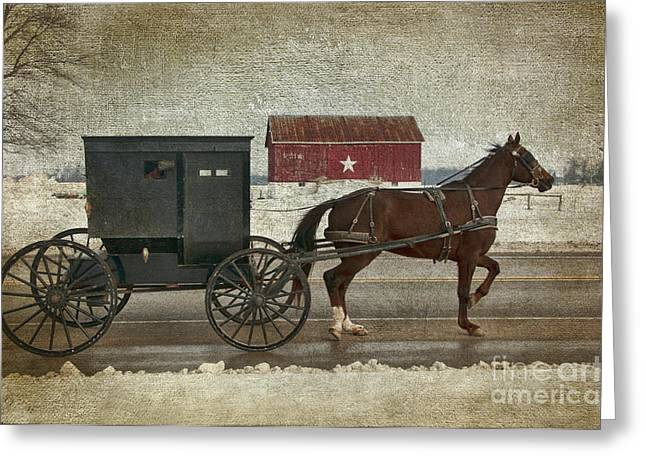 Amish Horse And Buggy And The Star Barn Greeting Card