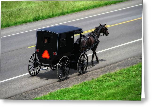 Amish Horse And Buggy In Ohio Greeting Card by Dan Sproul