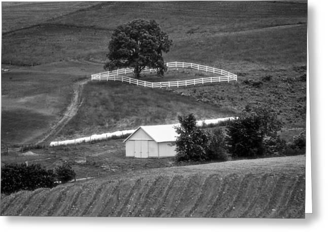 Amish Land Greeting Card