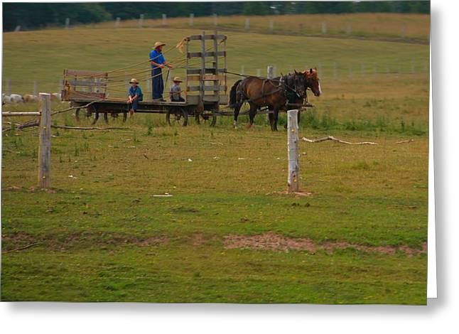 Amish Man And Two Sons On The Farm Greeting Card by Dan Sproul