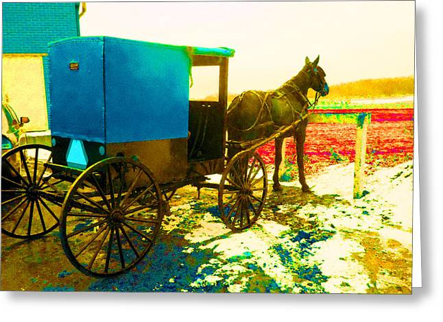 Amish Parking Only Greeting Card