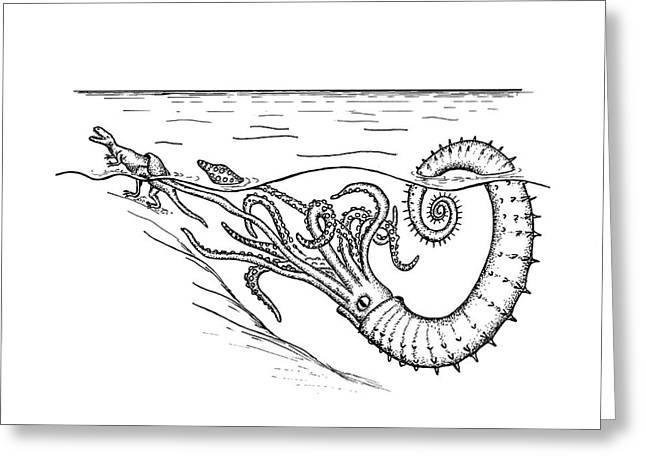 Ammonite Attacking A Dinosaur Greeting Card