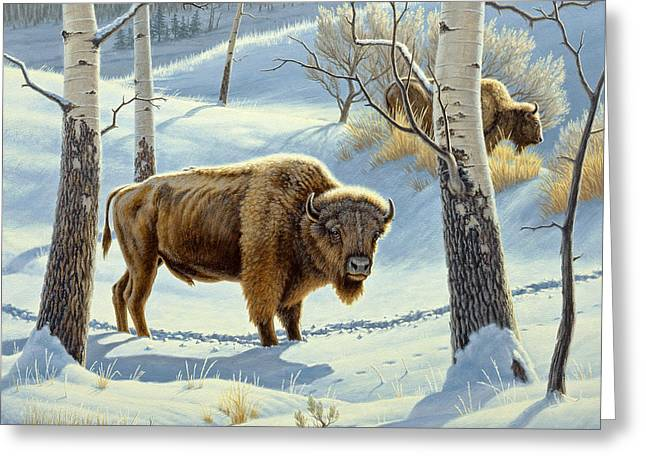 Among The Aspens- Buffalo Greeting Card by Paul Krapf