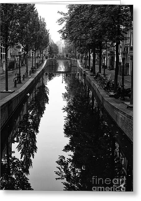 Amsterdam Trees In The Canal 2014 Greeting Card