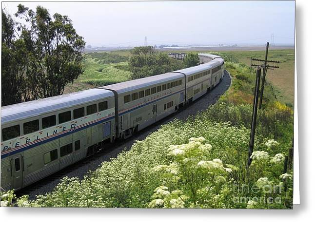 Coast Starlight At Dolan Road Greeting Card
