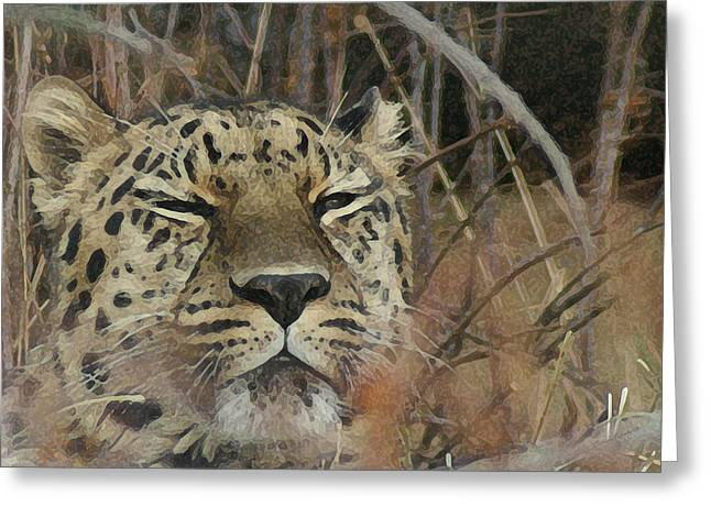 Amur Leopard 1 Greeting Card by Ernie Echols