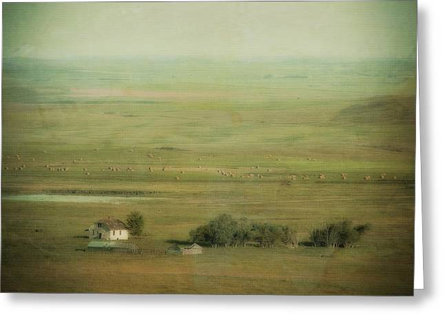 An Abandoned Farmhouse Greeting Card by Roberta Murray
