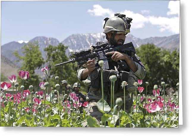 An Afghan National Army Soldier Patrols Greeting Card