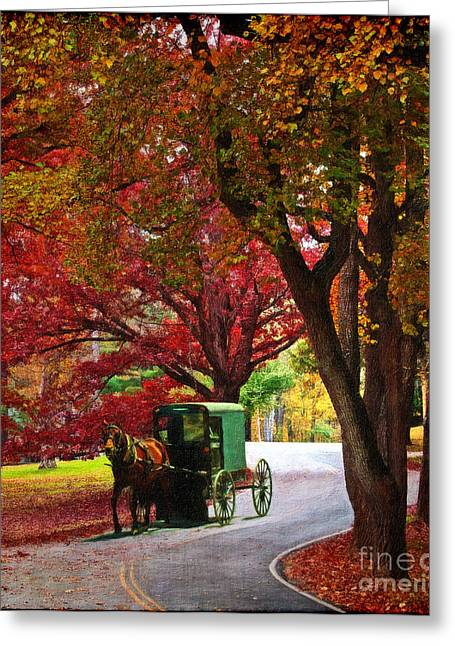 An Amish Autumn Ride Greeting Card by Lianne Schneider