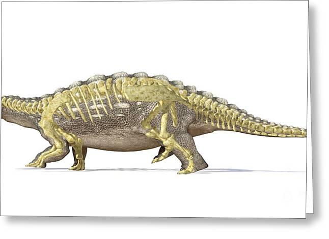 An Ankylosaurus Dinosaur With Full Greeting Card by Leonello Calvetti