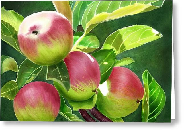 An Apple A Day Greeting Card by Joan A Hamilton