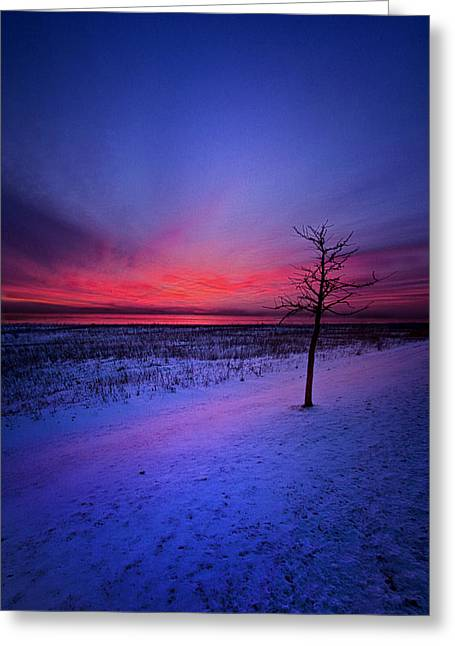 An Audience Of One Greeting Card by Phil Koch