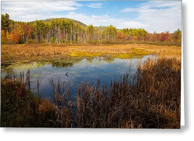 An Autumn Afternoon In The Adirondacks Greeting Card
