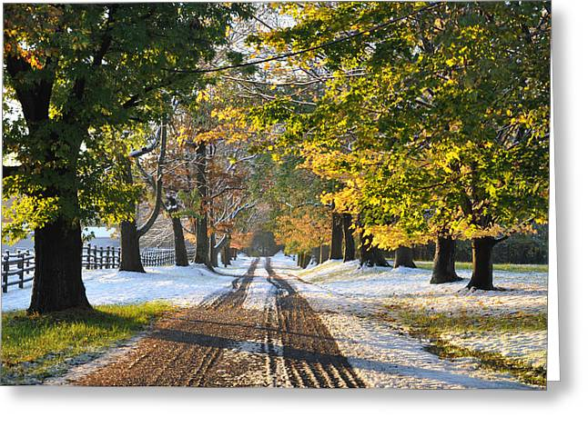 An Early Winter Greeting Card by Bill Cannon