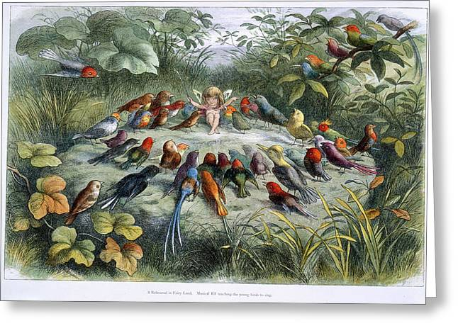 An Elf And Birds Greeting Card by British Library