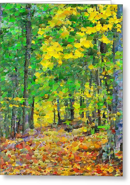 An October Walk In The Woods. 1 Greeting Card