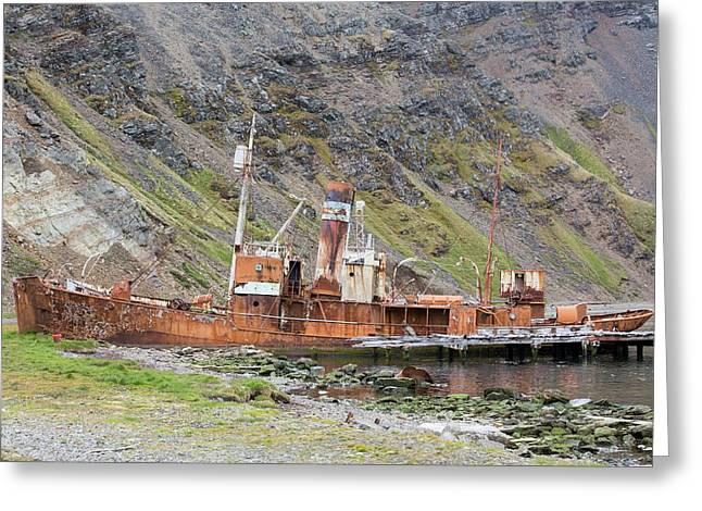 An Old Whaling Ship Greeting Card by Ashley Cooper