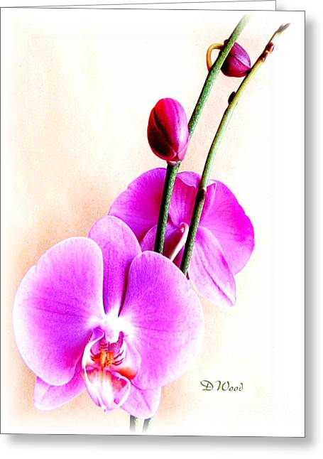 An Orchid For You Greeting Card by Doris Wood