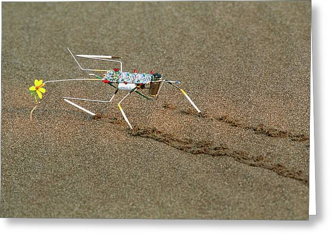 Analogue Robot Insect Greeting Card