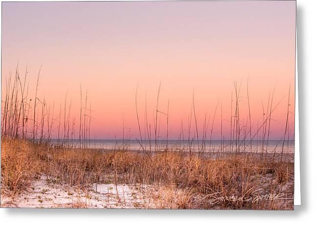 Anastasia Beach Dunes Sunset Greeting Card