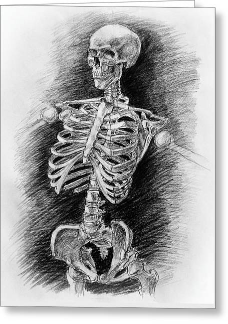 Anatomy Study Mister Skeleton Greeting Card by Irina Sztukowski