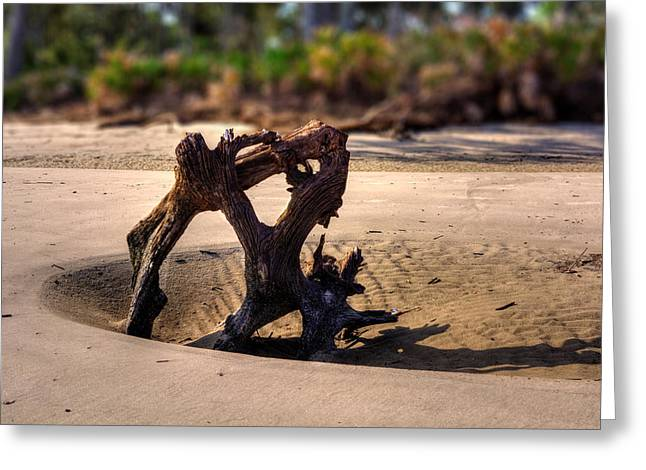 Anchor Driftwood On Jekyll Island Greeting Card by Chrystal Mimbs