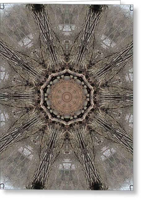 Ancient Cottonwood Greeting Card