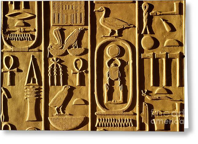 Ancient Egyptian Hieroglyphs Greeting Card by Farrell Grehan