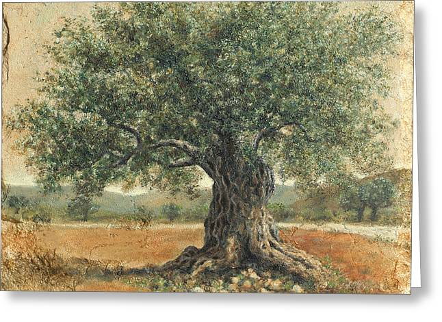 Ancient Olive Tree Greeting Card by Miki Karni