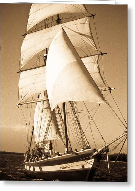 Ancient Pirate Ship In Sepia Greeting Card by Douglas Barnett