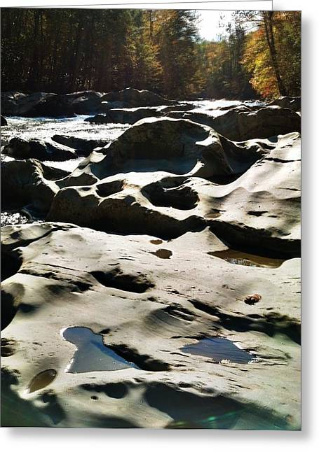 Greeting Card featuring the photograph Ancient River by Janice Spivey