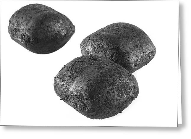 Ancit Fuel Briquettes Greeting Card by Science Photo Library